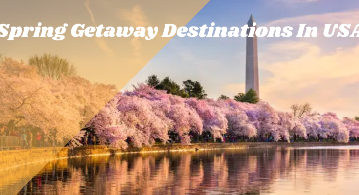 Top 5 Spring Getaway Destinations In the USA